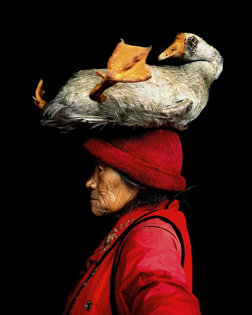 Lady With The Goose