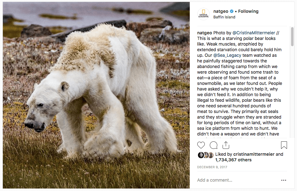 18 Most Popular IG Images of 2017
